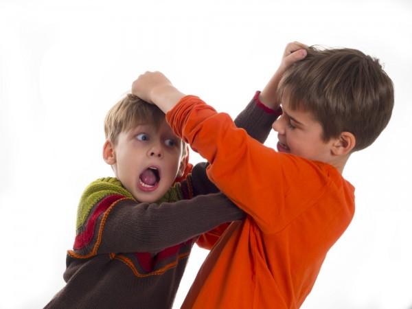 Minimediacje – jak towarzyszyć dzieciom w konflikcie . Warsztaty dla rodziców, opiekunów i nauczycieli